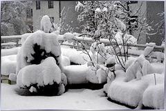 Europe wake up: Climate Conference in Paris Dec 2015: Observed, so it was than here still winter was... Klima-Konferenz in Paris Dez 2015: Merket auf, so war es als es hier noch Winter gab... ©UdoSm