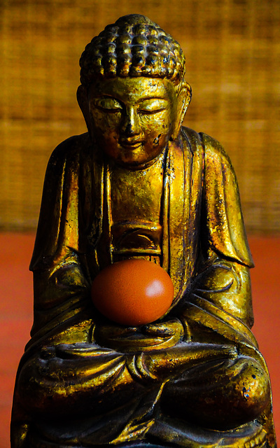 The 50-Images-Project ( 16/50 ): The Present of Buddha