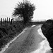 run off after heavy rain