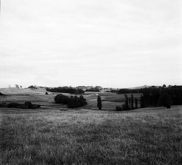 Albertland