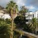 View From Hotel Colon Rambla