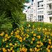gruenflaeche-1220460-co-26-06-16