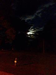 Lune en l'eau