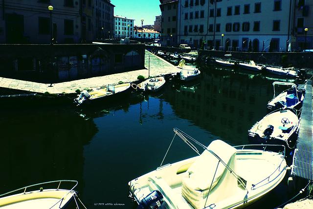 Venezia Nuovo, Livorno