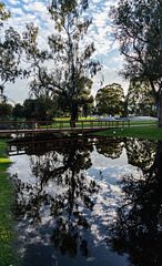 Winter Reflections From OZ
