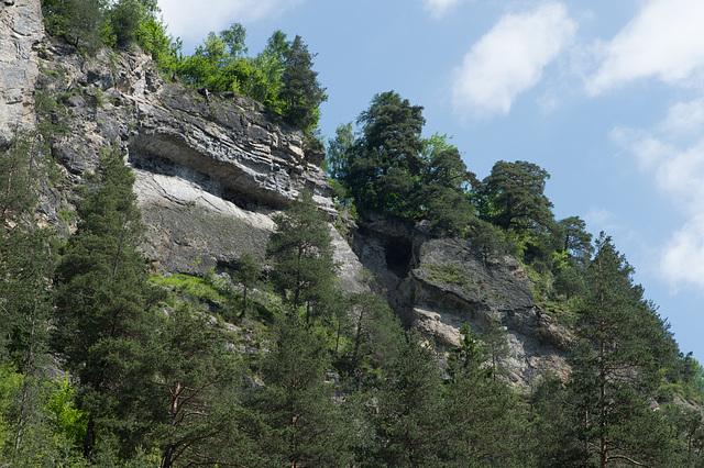 Felspartie und Vegetation nahe des Landwasserviadukts - 2015-06-12--D4 DSC2475