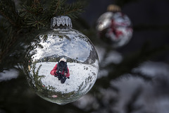 * Merry Christmas *
