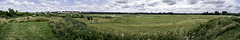 Panoramic view over Tice's Meadow