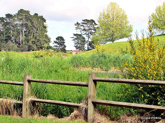 Park Fence.