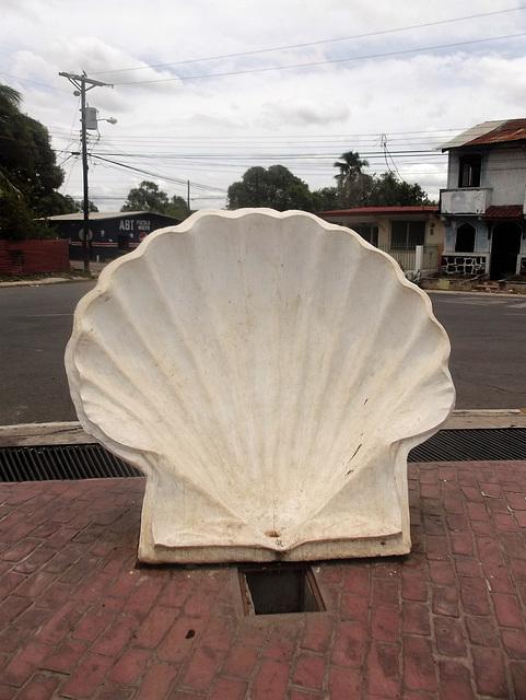 Street's shell