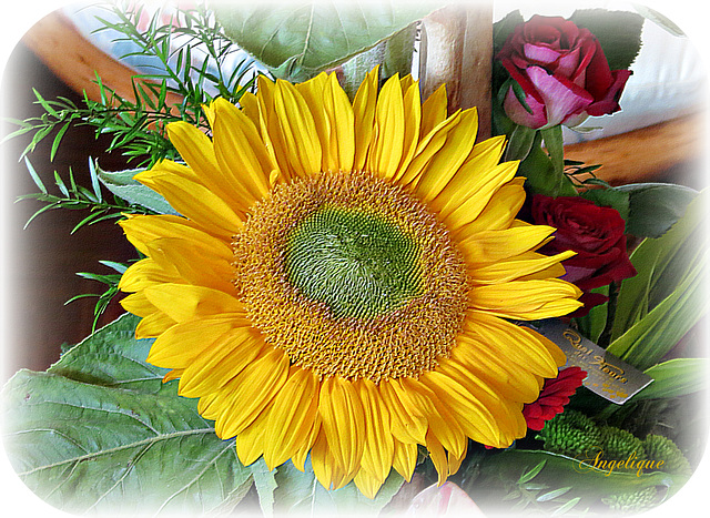 Un bouquet de soleil pour un bon WE !belle journée à vous