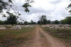 Thaï cemetery / Cimetière thaïlandais