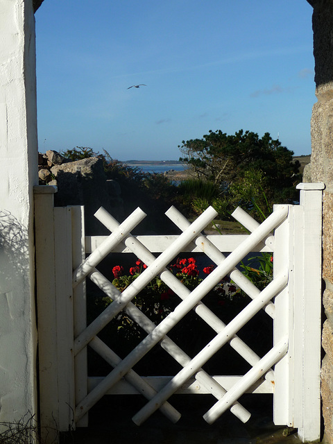 HFF from the Scilly Iles