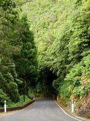 Hillside winding road.