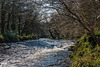 Dartmoor - 20180325