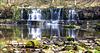 Nidd Falls