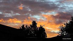 Tokoroa Sunset