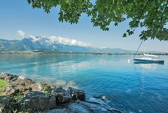 Balade au lac de Thoune...