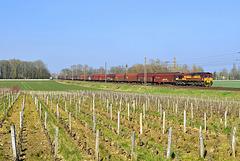 Class 66 dans les vignes