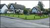 village green thatch
