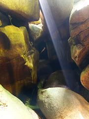 Findlingshöhle