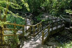HFF-  Grotton fences