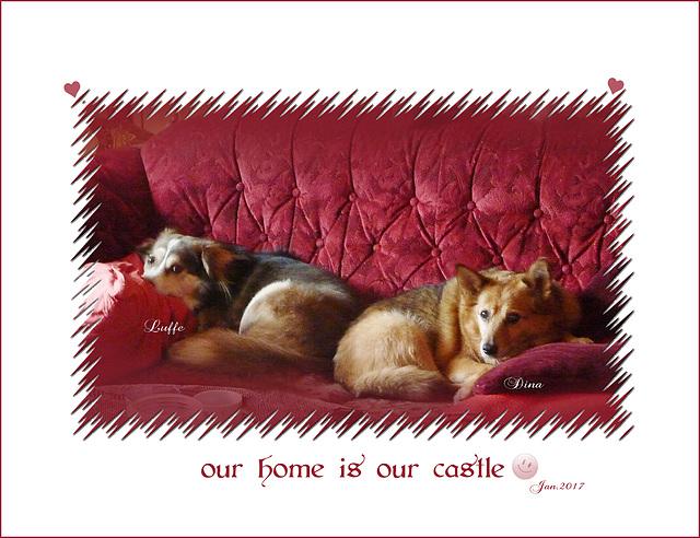 auf der Couch ist es einfach am schönsten (((•‿•)))