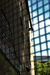Urban Light And Shadows