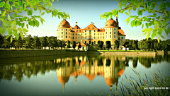 A peek at Moritzburg Castle