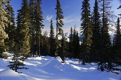 Mount Spokane