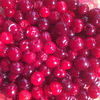 The cherry harvest has begun...4.5 kgs off just one tree so far!