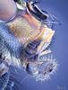 Blue Bottle Profile Portrait