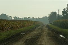 Corn and Saginaw Highway