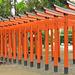 Torii d'un sanctuaire shinto, Jardin Suizenji Jôju-en, Kumamoto (Kyûshû, Japon)
