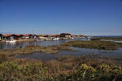 Cycling from Bordeaux Vineyards to the Atlantic Coast /Salt marshes / La Teste-de-Buch