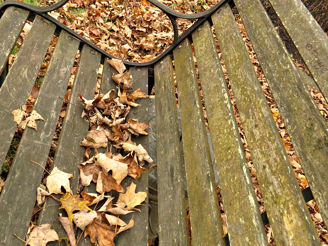.. fall bench