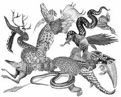 animalian grotesque
