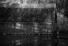 House Fence Shadow