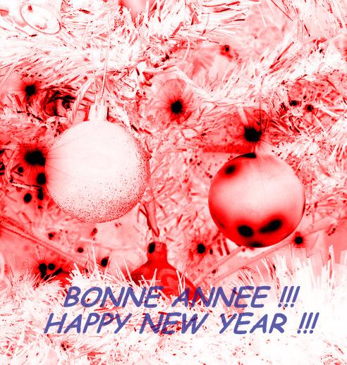 BONNE ANNEE / HAPPY NEW YEAR !!!!
