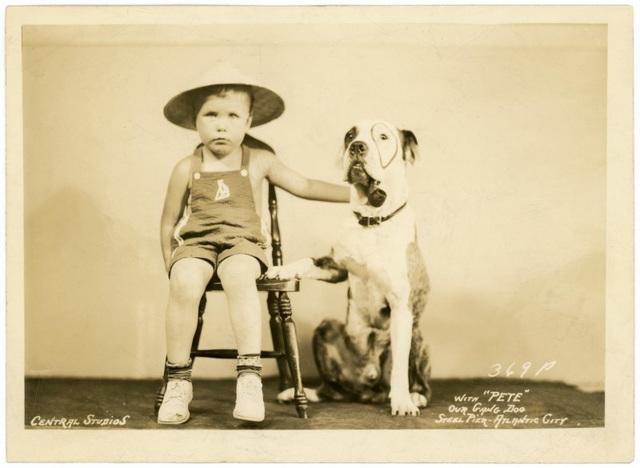 Pete the Our Gang Dog, Steel Pier, Atlantic City, N.J.