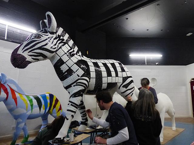 Before Zany Zebras_011 - 15 March 2016
