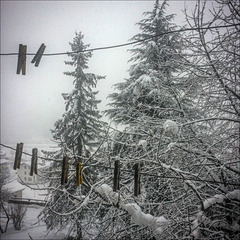Winter Pentagram
