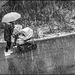 #21 an umbrella