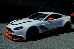 Le Mans 24 Hours Race June 2015 13 X-T1
