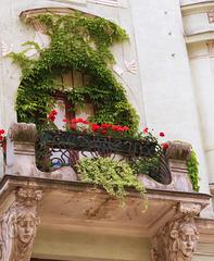 1 (15)...austria vienna window, door...by schwedenplatz