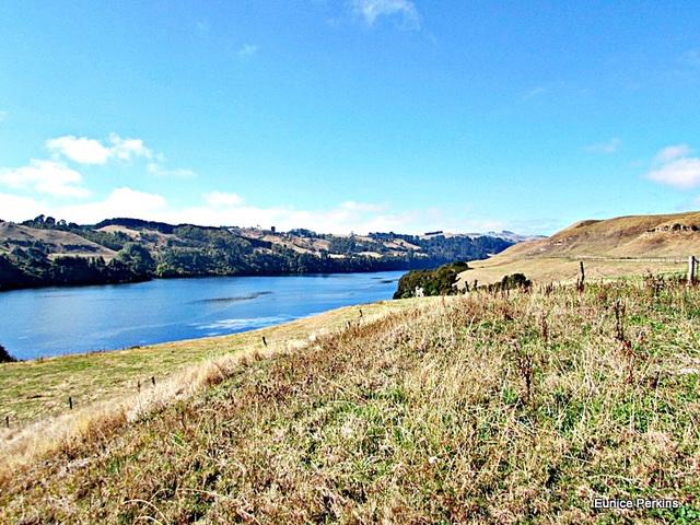 Waikato River Above Doc Camp