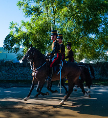 Three Mounted Horse
