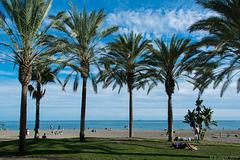 Oktober in Malaga (© Buelipix)