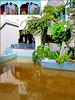 Hammamet : un'altra inquadratura del resort - 2 -