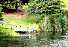 Jetty at Lake Karapiro